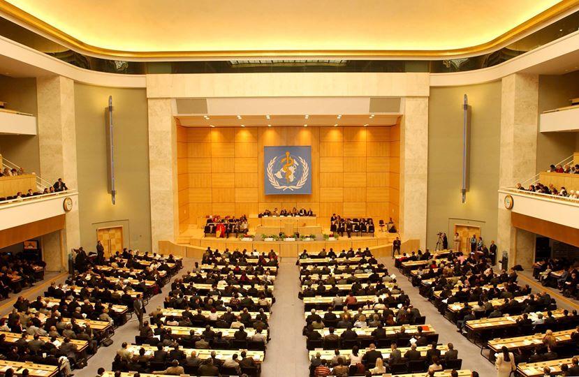 The 67th World Health Assembly. Courtesy World Health Organization.
